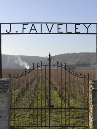 Vini di Borgogna - Domaine Faiveley
